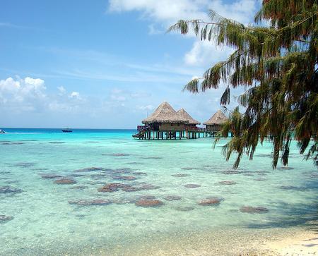 En el sur del océano Pacífico encontramos las islas de la Polinesia Francesa, con unos paisajes impresionantes, una gastronomía exquisita y el contacto total con la exuberante naturaleza. Los meses más recomendables para viajar serían de mayo a octubre, cuando no suele llover y la temperatura asciende a unos agradables 26 grados.