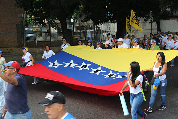 pancartas marcha 1S bandera de venezuela
